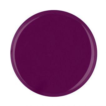 Builder colour gel Plum
